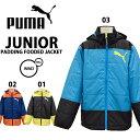 puma/プーマジュニア中わたジャケット835660【あす楽対応_北海道】