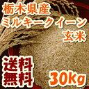 新米29年 栃木県産ミルキークイーン 玄米 30kg