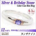 タンザナイト シルバー925 SV925 カラーコートリム シンプル リング 12月 誕生石 刻印対応 指輪 シンプル 2 メンズ レディース 大きい サイズ 可愛い おしゃれ プレゼント ギフト 男性 女性 記念日 誕生日プレゼント 友達 お揃い