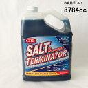 塩害腐食防止剤 ソルトターミネーター原液 3784cc 単品 SALT TERMINATOR ボート 水上バイク 塩害除去 97843