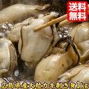 生牡蠣 広島産 1kg 牡蠣 ギフト プレゼント 当店人気