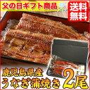 うなぎ 国産 蒲焼き 2尾セット【父の日】 プレゼント 父の日のプレゼント 食品 食べ物