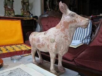 中國瓷器及中國唐王朝真實 (真正的)