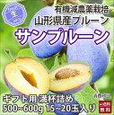 プルーン 栄養価 通販