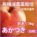 �� �����'� �������� ���� �� 5kg �R�`�Y ���Y...