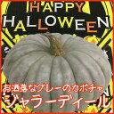 ハロウィン 生かぼちゃ 送料無料 【 ハロウィン カボチャ ...