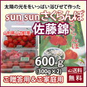 Sun��Sun���������� ��ƣ�� �������� �������� �ʽ���ͥL��M�˥Х�ͤ� 600g