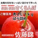 Sun Sun さくらんぼ 佐藤錦 (秀2L)バラ詰め 1kg