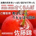 Sun Sun さくらんぼ 佐藤錦 (秀2L�L)バラ詰め 1kg 05P03Dec16