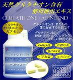 ★健美本舗★ 健康・美容・エイジングを担う!! 還元型 天然グルタチオン酵母エキス 10P01Nov14