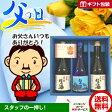 [父の日 ギフト] [送料無料] 父の日日本酒ギフト 金盃大吟醸生酒・金盃生酒300ml3本セット