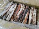 〔業務用大量・お買い得〕〔送料無料〕北海道函館産船凍急速冷凍真いか8kg(25〜35杯
