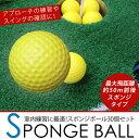 スポンジボール/練習用ゴルフボール トレーニングボール 30個セット/イエロー