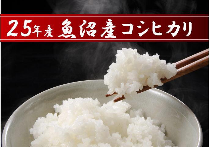 25年産 魚沼産コシヒカリ 新潟 1Kgの商品画像
