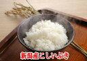 1年度産 【送料無料】 新潟県産こしいぶき 5kg(5kg×1)