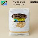 コーヒー豆 250g キリマンジャロ100% ドリームコーヒー 【メール便送料無料】