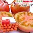 """【最大10%OFF】静岡県 """"高糖度フルーツトマト アメーラ"""" 大きさおまかせ 約1kg ほん"""