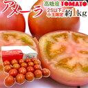 """静岡県 """"高糖度フルーツトマト アメーラ"""" 約1kg 2S以下 小玉限定 化粧箱入り フルーツトマトは小さいほど味が濃い♪【楽ギフ_包装】"""