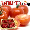 """【送料無料】和歌山産 フルーツミニトマト """"キャロルセブン"""" 約2kg【予約 11月中旬以"""