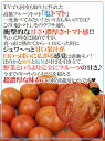 """【送料無料】熊本県やつしろ産 訳あり """"塩トマト"""" ..."""