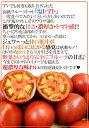 """【送料無料】熊本県やつしろ産 塩トマト """"塩乙女ト..."""