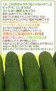 【内祝ギフト】選べる手づくりドレッシング3本詰合せ ドレッシング ギフト石川県 金沢グルメ 内祝 内祝ギフト お歳暮 仏事お供え