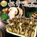 """【送料無料】中国産 """"松茸"""" 約1kg 訳あり 開き方・大きさおまかせ【予約 7月〜8月以降"""