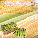 """""""生で食べられるフルーツコーン"""" 10〜16本 約4.5kg..."""
