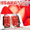 【エントリーでポイント10倍&200Pプレゼント】【送料無料...