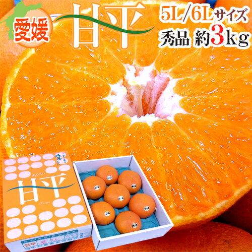 愛媛産 甘平品 5L〜6L 特大玉6〜7玉 約3kg