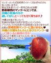 宮崎産に負けない沖縄マンゴー♪太陽の育んだ濃厚な味わい!