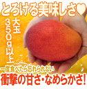 あの濃厚な甘さをリーズナブルに♪宮崎完熟マンゴー!