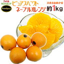 """""""プレミアムネーブルオレンジ ピュアスペクト"""" 約1kg 大きさおまかせ《2kg購入で1kg、3kgで2kg、5kgで5kg、7kg購入で10kgおまけ》"""