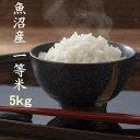 30年 お米 5kg 新潟 魚沼産コシヒカリ 一等米 白米 農薬を抑えた減肥栽培米 当地 農家 自慢のお米 検査済み