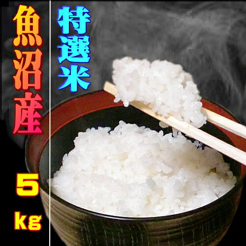 29年 特選米 魚沼産コシヒカリ 白米 5kg 農薬を抑えた当地農家の厳選した お米