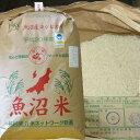 28年 玄米 30kg 新米【新潟 魚沼産コシヒカリ 特別栽培米】農薬を抑えた当地 農家 の お米(出荷は10/2日頃から)