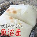 餅 28年産 新米 もち お餅(ツキタテ 餅 送料無料 お試しセット)いなか餅(白500gx1個)生