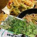 山菜セット 山菜 天ぷら蕎麦 レシピ用 満足セット【お任せ た〜っぷり6人前】そば好き必見 送料無料
