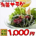 海藻サラダ(乾燥タイプ)1000円ポッキリ 送料無料 ワカメのメカブと寒天入り海草サラダ 無添加 お返し ぽっきり ハロウィン パーティー おつまみ