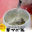 めかぶ茶 お試しサイズ 乾燥メカブのお茶 みそ汁 芽か