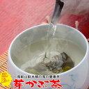 めかぶ茶 お試し 芽かぶ茶と梅めかぶ茶の2袋セット 送料無料 乾燥メカブの健康茶 お茶 みそ汁 芽かぶスープ お吸い物にも 通販 食物繊維 お取り寄せ 腸活 水溶性食物繊維 海藻 買い回り 送料込 ハロウィン パーティー おつまみ