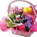 母の日 ギフト 鉢植え スヌーピーハート 季節のお花お任せギフト スヌーピー入り 母の日 花鉢 プレゼント