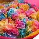母の日 プレゼント レインボーカーネーション 100本花束 ◆母の日期間限定ギフト