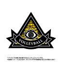 バレーボールワッペン ピラミッド型(アイロン/プロビデンスの目/スポーツ/秘密結社/エンブレム)
