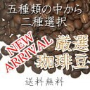 【ネコポス対応】5種類の中からお好きなの2種類選択!!コーヒ...
