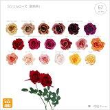 【1番人気!】ミシェルローズ(暖色系)fls-0713-dg