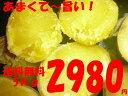 Img67061201