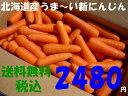 Img67204032