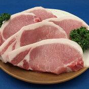 国産豚肉 ロースとんかつ トンカツ テキカツ用120g〜140gx1枚☆おいしい香川県産の豚肉 「讃玄豚」