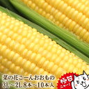 【予約】とうもろこし 菜の花こーん 極甘品種おおもの 8本〜...
